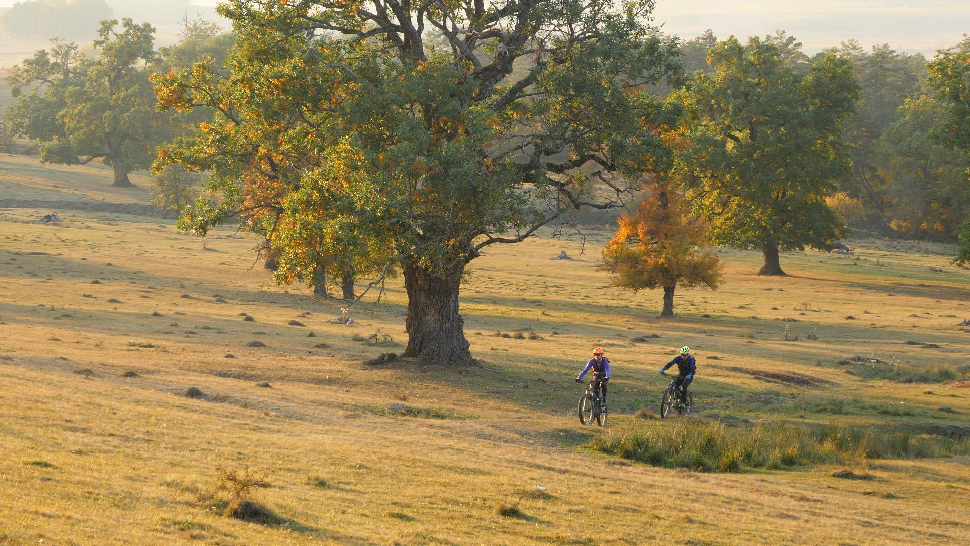Turul Discovery în Transilvania pe E-bike