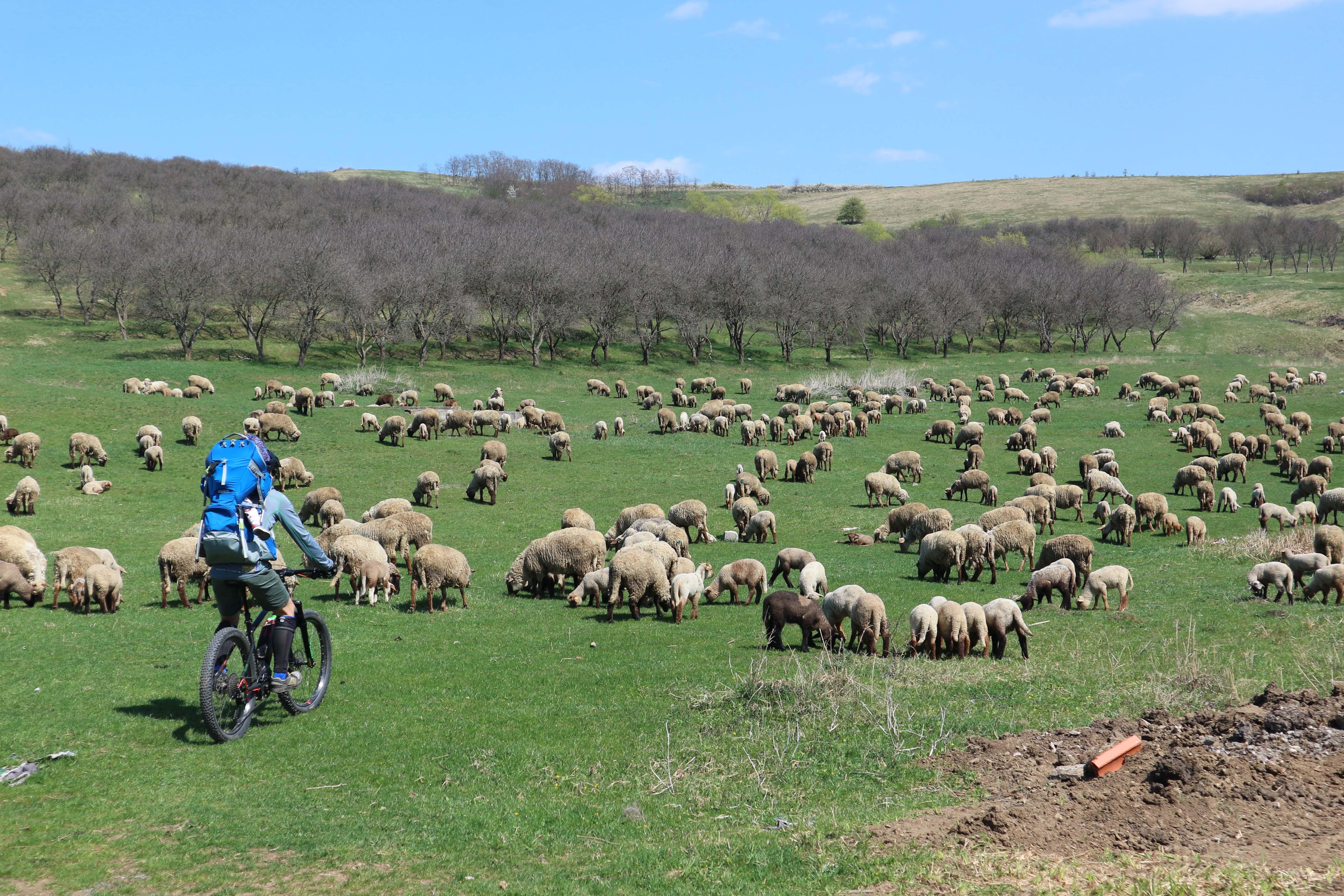 Turul Origini Maghiare în Transilvania pe E-bike