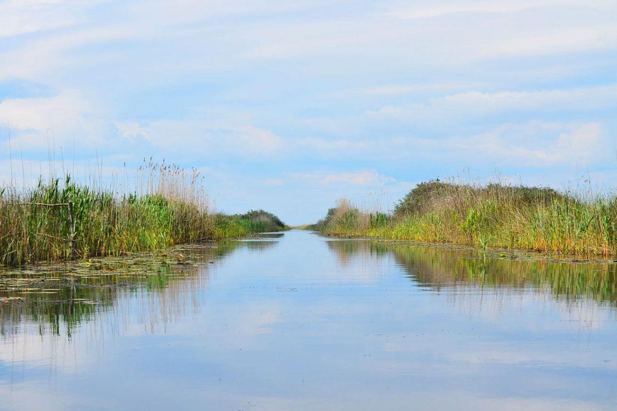 Explorează natura practicând Stand Up Paddle în Delta Dunării Mila 23