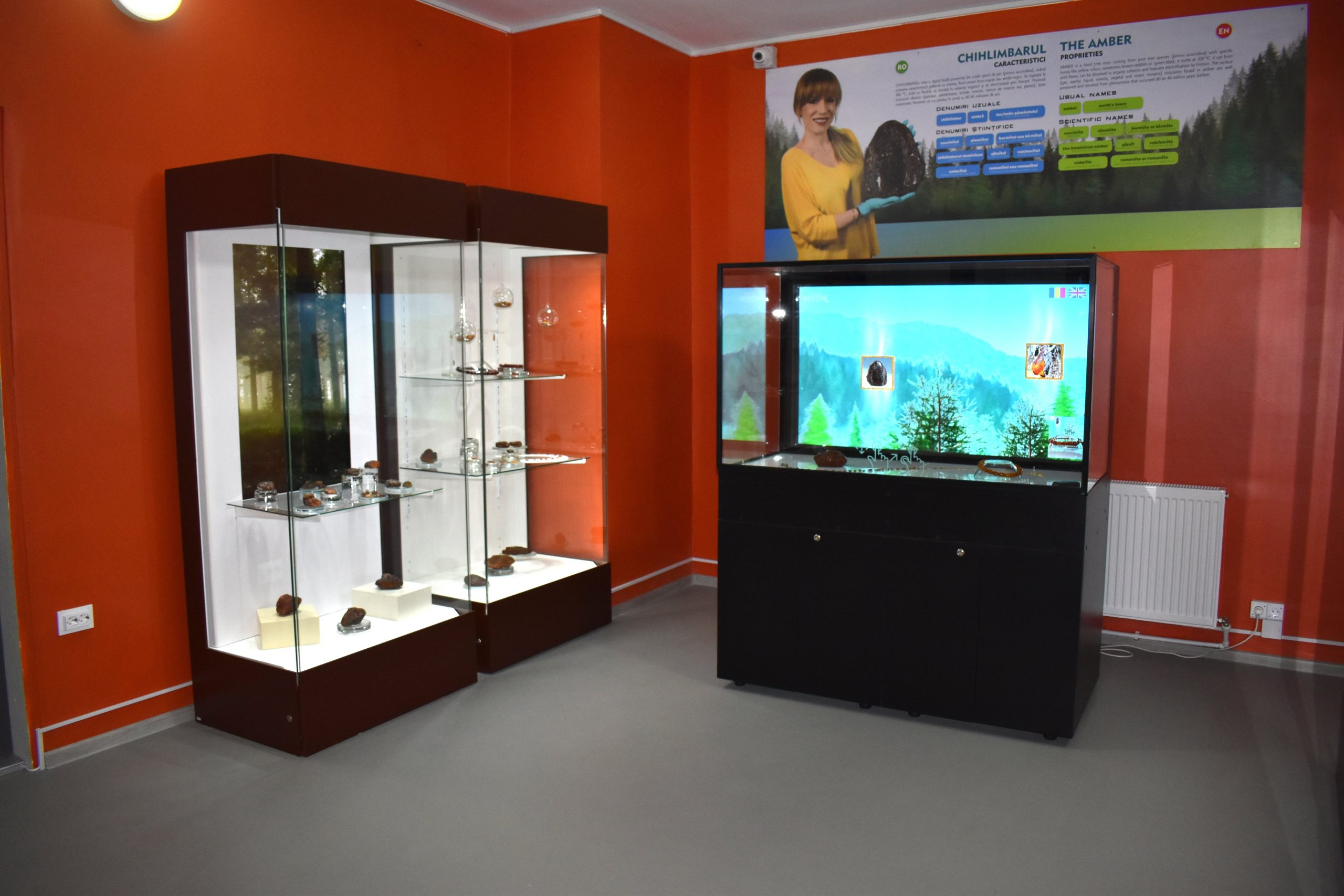 Muzeul Chihlimbarului Colti