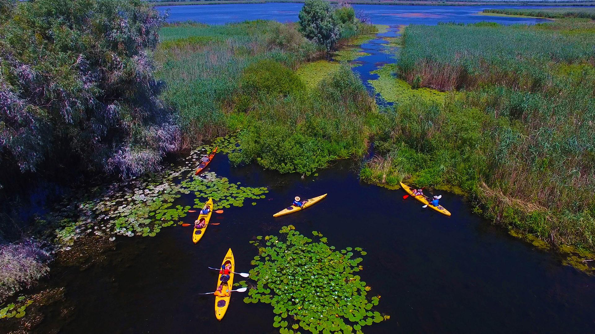 Self-guided Canoe Explorer în Delta Dunării, Mila23
