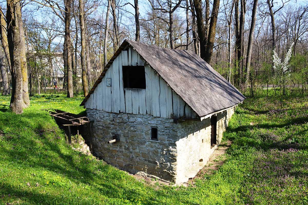 Vizitează Secția de Etnografie Petrești