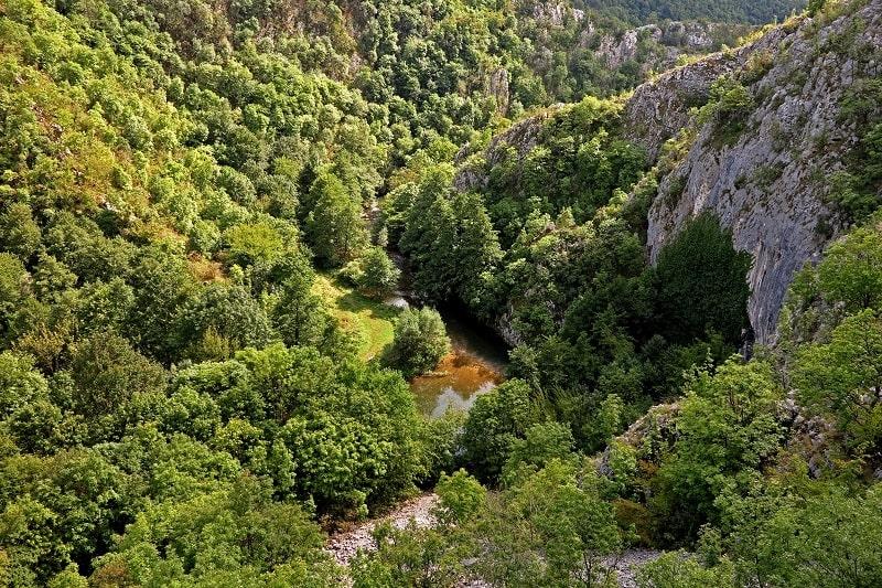 Drumeție în defileul râului Caraș cu plecare din Timișoara