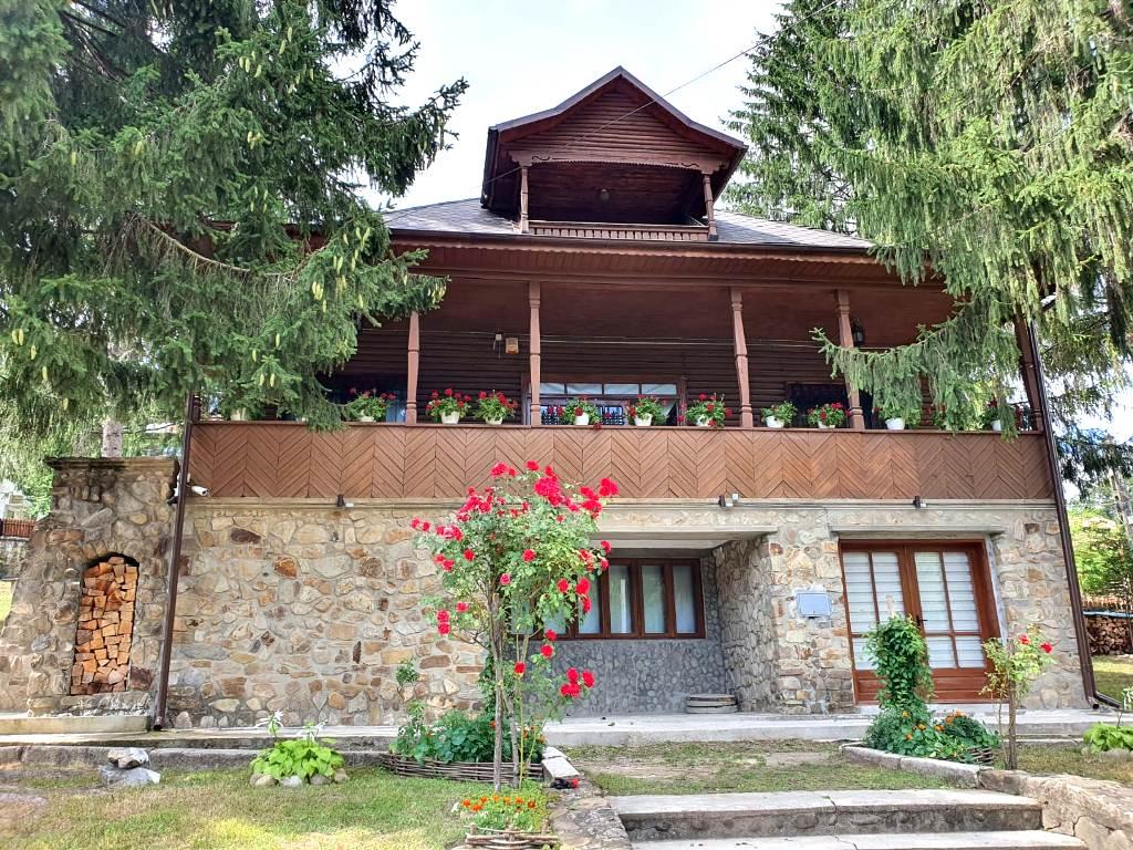 Muzeul Chihlimbarului Colți