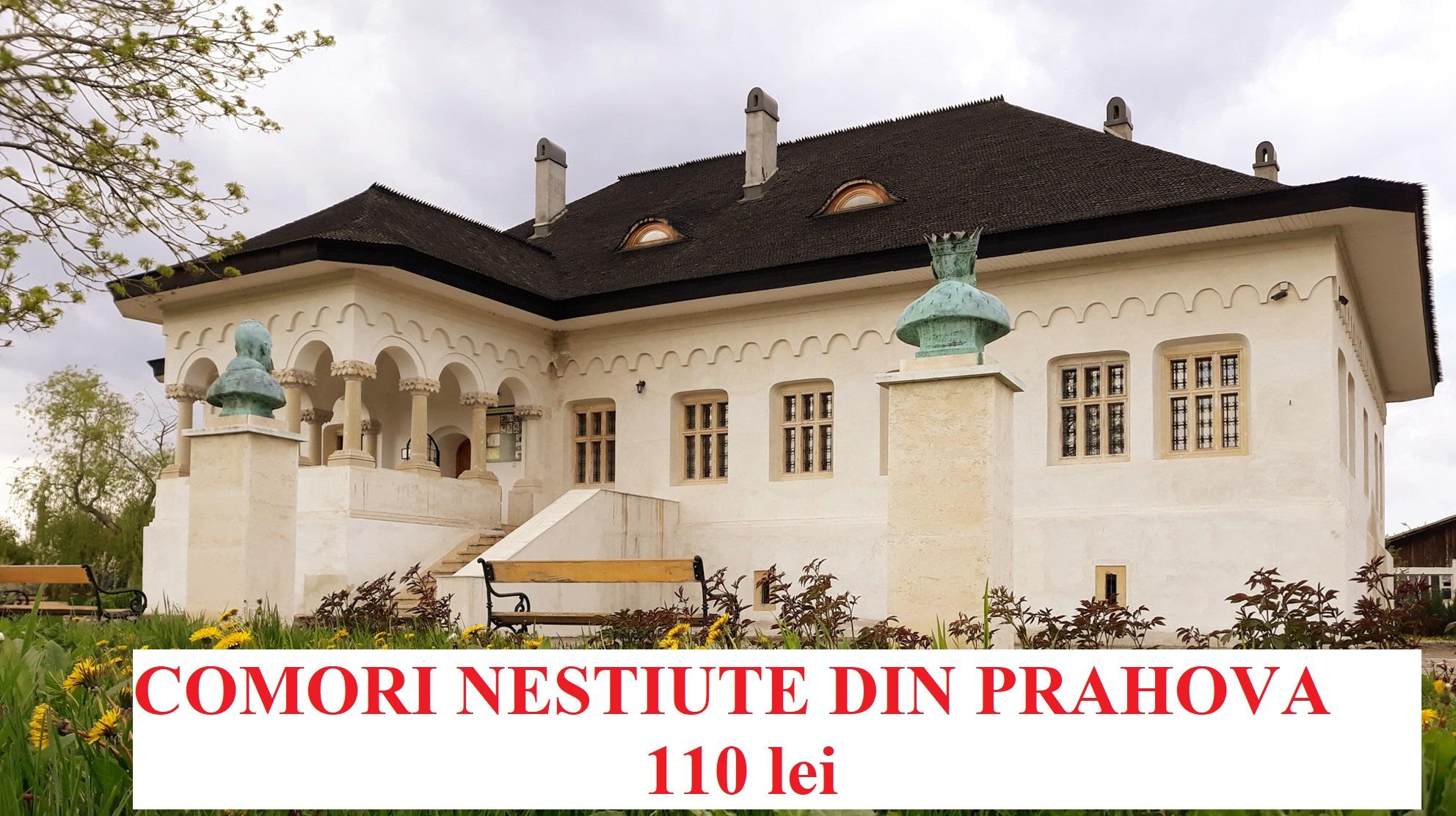 Comori nestiute din Prahova