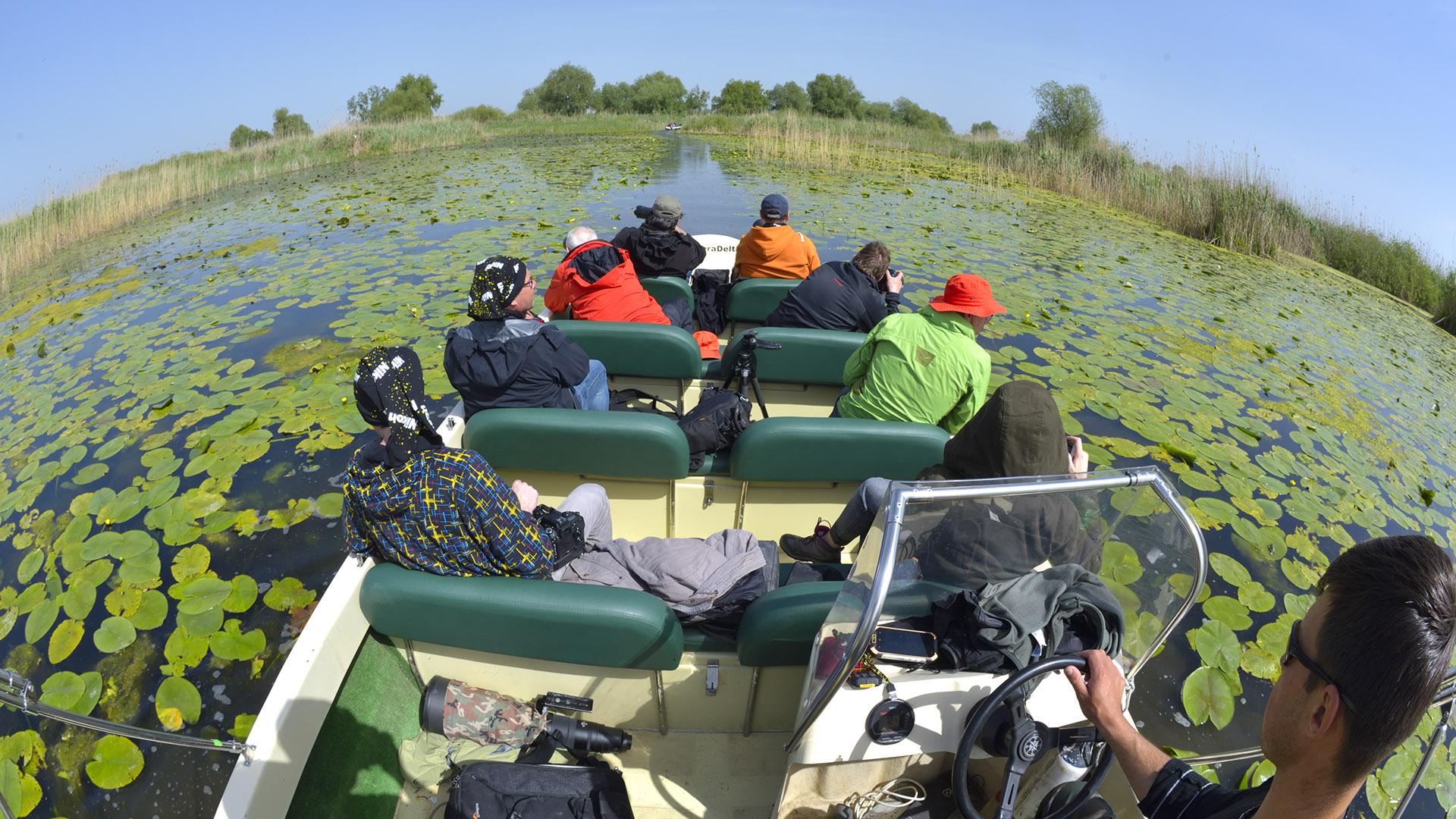 Excursie lentă de 4h în Delta Dunării - Nature Intensive - Program de Grup
