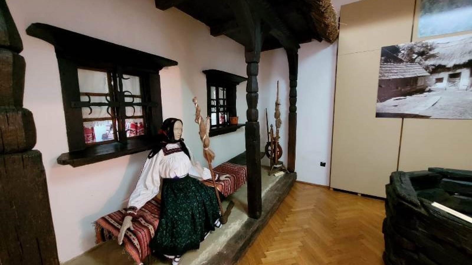 Muzeul Judetean Satu Mare