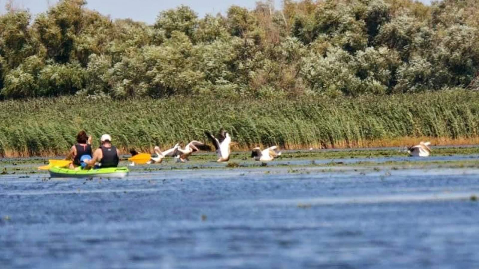 O zi cu caiacul în Delta Dunării în culori de Toamnă!