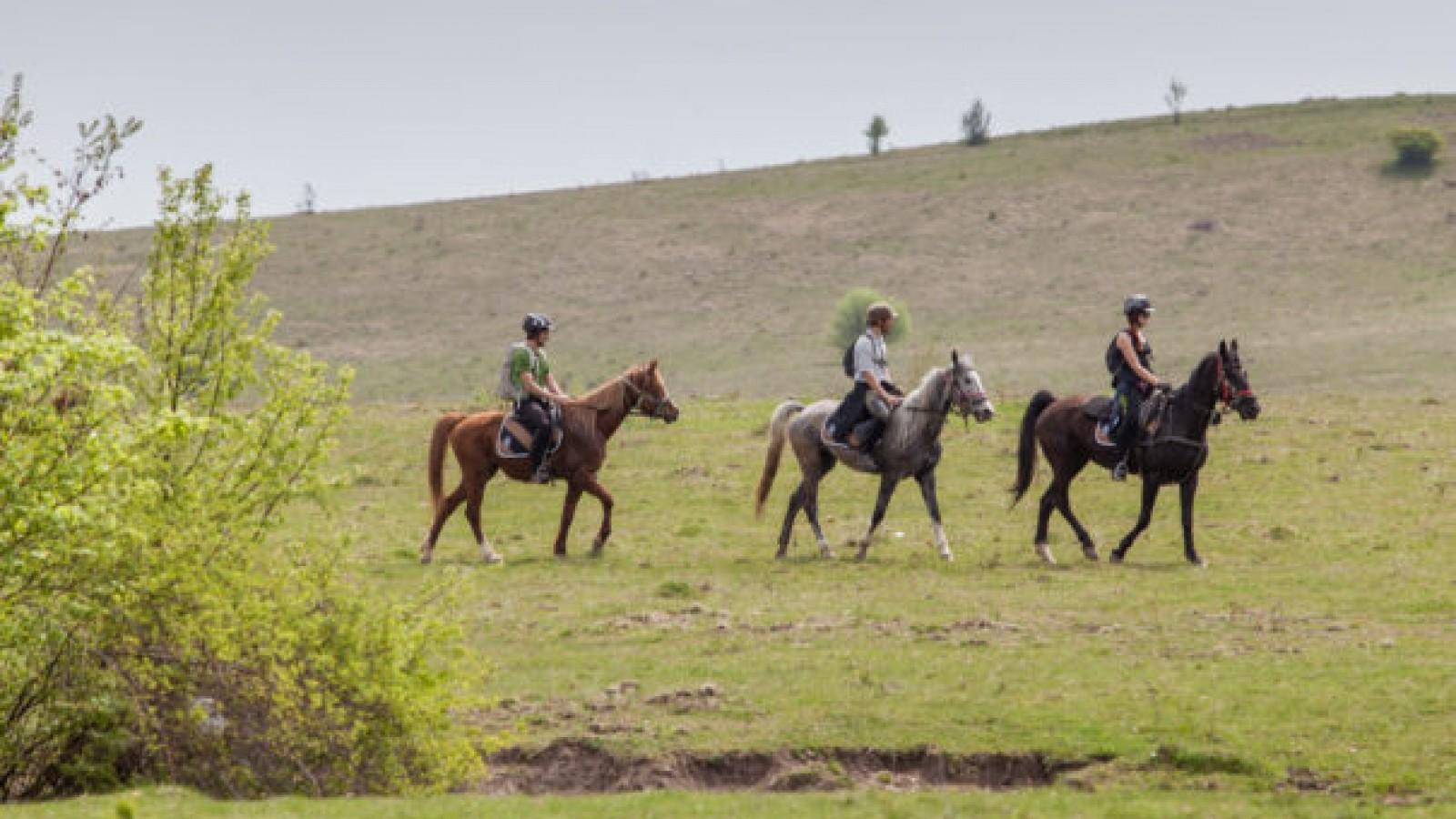Plimbare de 4 zile pe cai in Viscri
