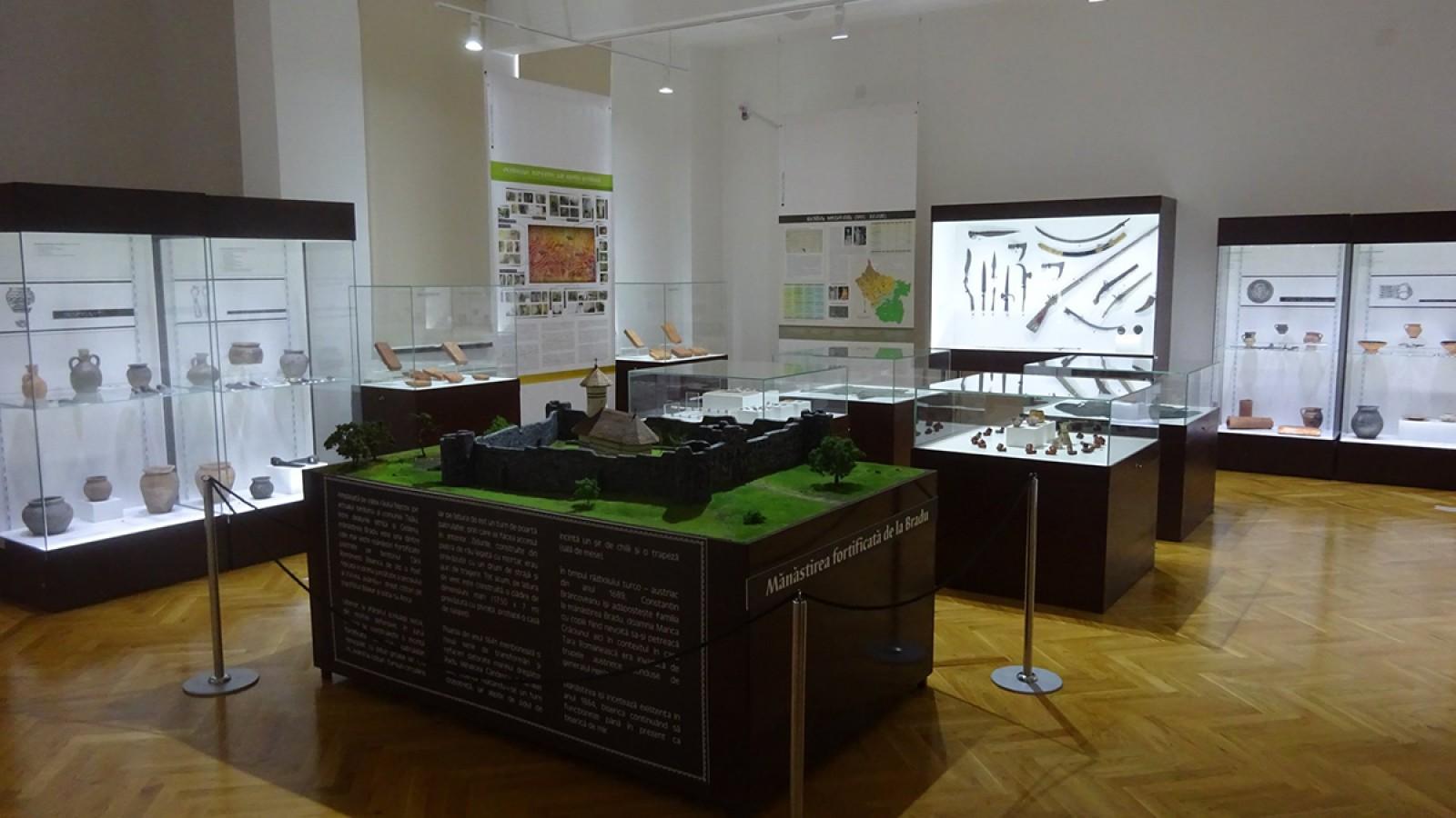 Muzeul Judetean Buzau