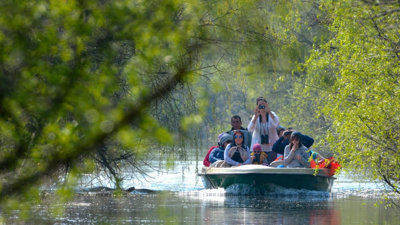 Sejur în Delta Dunării la Mila23, Lacuri - Letea