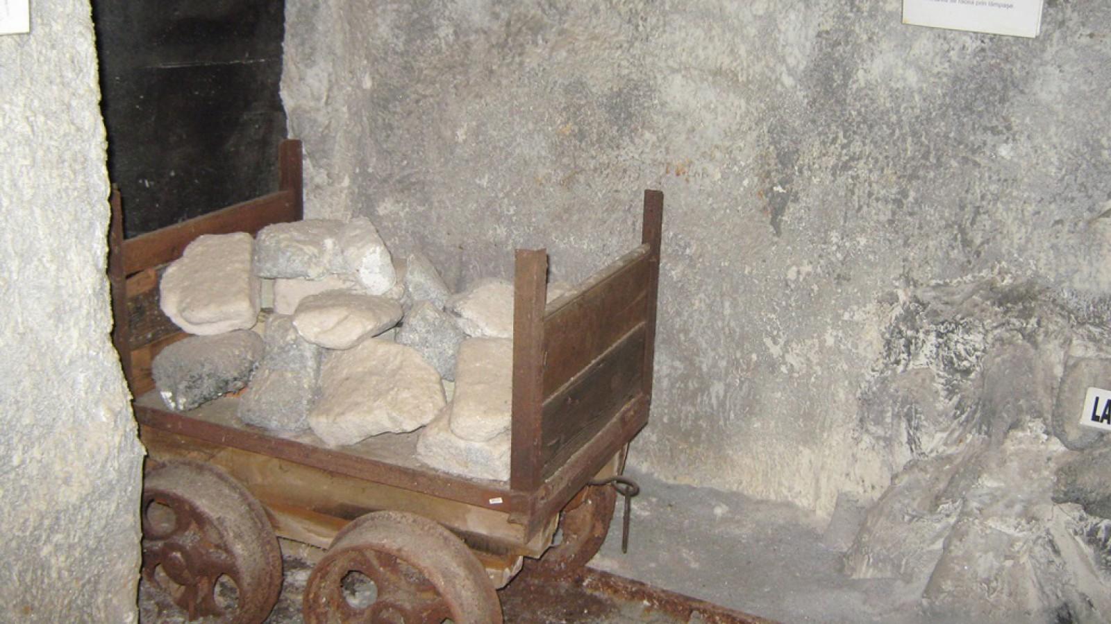 Muzeul Sarii Slanic