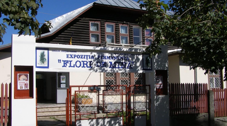 Muzeul Flori de Mina