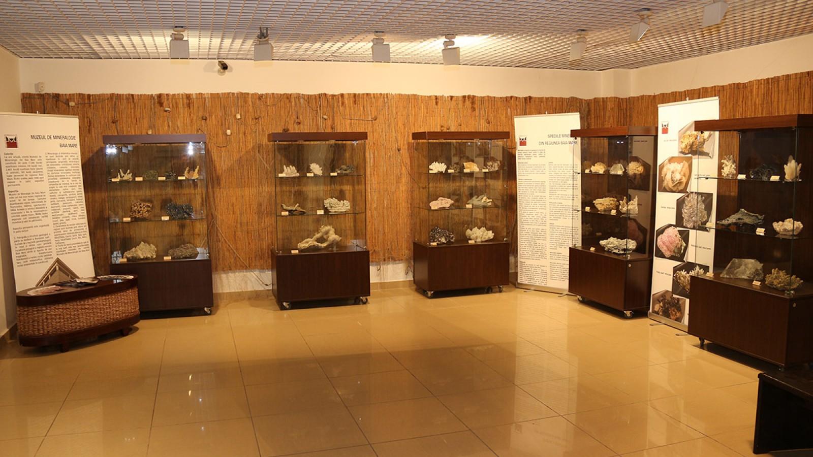 Centrul Muzeal Ecoturistic Delta Dunarii
